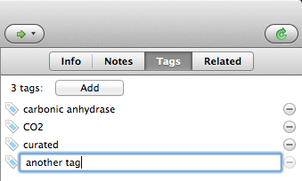 Adding a tag in the Tags tab of an item.